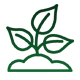 Sprouting Plant Icon
